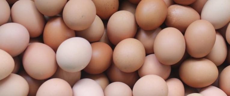 Jajko - kalorie